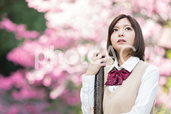 女学生 卒業の写真