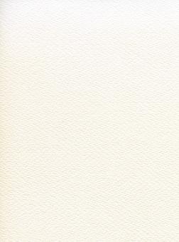 水彩紙 ウォーターペーパー(背景画像素材)合成加工用01の写真