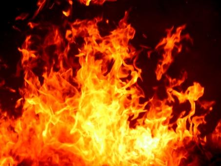 炎 0565の写真