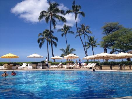 ハワイ プール やしの木 空 海 夏 雲 泳ぐ パラソル 7月 8月 水泳 ヤシ やし ヤシの木 やしのき サマー