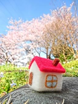 マイホーム 家 イエ 家族 ファミリー 新生活 新居 引っ越し 桜 青空 晴れ 日差し お花見 自然 風景 景色 結婚 しあわせ 春 一軒家 一戸建て 花 季節 植物 ピンク ほのぼの 幸せ 人生 家庭 小物