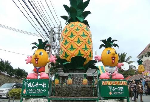 satochi サトチ 沖縄 おきなわ オキナワ okinawa なごぱいなっぷるぱーく ナゴパイナップルパーク パイナップル ぱいなっぷる pineapple 公園 こうえん コウエン パーク park
