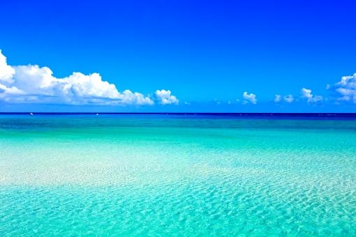 夏 南国 海 バケーション イメージの写真