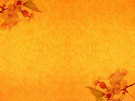 葉 落ち葉 枯れ葉 ドライリーフ 木の葉 素材 葉脈 植物 自然 ベージュ 黄色 オレンジ パターン 暖色 ナチュラル 暖かい 乾燥 空間 テクスチャ 質感 背景 背景素材 バックグラウンド テキストスペース コピースペース 透かし 透ける 半透明 春 加工 写真加工