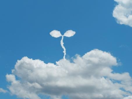 空 雲 ECO エコ eco エコロジー 環境 環境問題 社会 社会問題 リサイクル 節電 節約 省エネ 双葉 ふたば 誕生 兆し 希望 未来 自然 自然保護 ecology economy 成長 福祉 福祉問題 バナー エネルギー エネルギー問題
