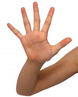 ストップ stop パー 待った バイバイ 手 手のひら 切り抜き 背景白 背景しろ 人物 人物素材 タッチ 指 腕 親指 人差し指 小指 中指 立入禁止 禁止 お待ちください 待って まった チラシ素材 web素材 web背景