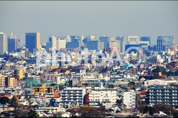 上空から撮った街並み(色調補正後)の写真