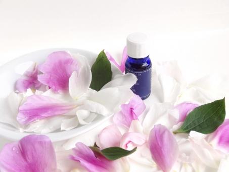 エステ アロマオイル 花びら 美容 マッサージオイル アロマ 芳香 オイル アロマエッセンス 植物 花 バイオレット シャクヤク花びら