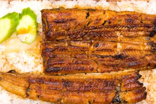 うな重 ウナギ たれ 老舗 スタミナ 外食 高級 土用丑の日 夏 パワー エネルギー うまい カロリー ダイエット 食事 料理 きゅうり 漬物 米 ライス 食べる