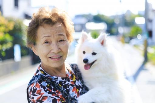 女性・犬の写真