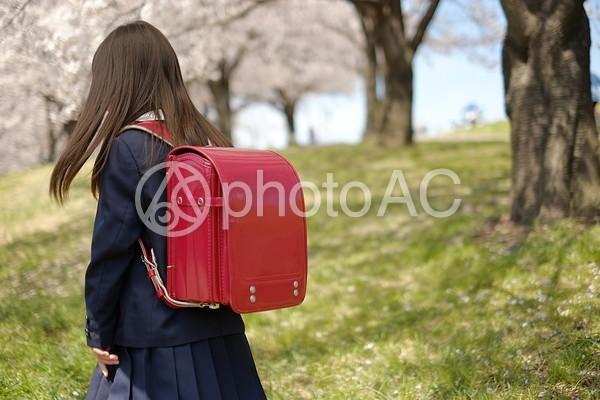 小学生の女の子31の写真