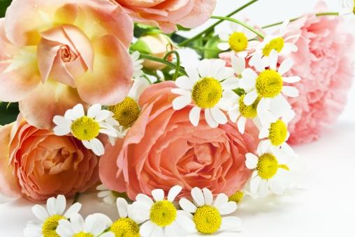 花 バラ ピンク プレゼント 花束 マーガレット キュート 可憐