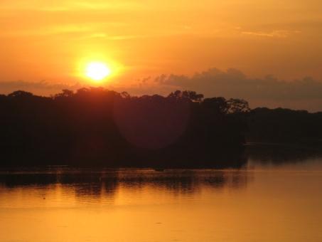 熱帯林を流れる川と夕日の写真