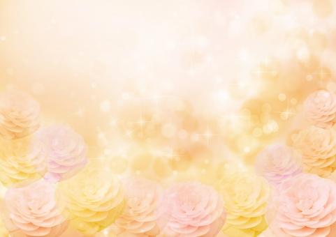 春 秋 桜 さざんか 椿 花 4月 卒業 入学 お祝い 光 ひかり 花びら 華やか きらきら キラキラ オレンジ ピンク 桃色 和柄 和 和風 着物 祝 背景素材 素材 背景 テクスチャ テクスチャー 花柄