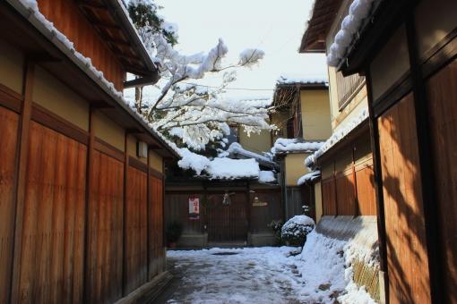 観光 冬 雪 京都 古都 しめ縄 路地 正月 正月飾り 板塀 東山 石塀小路 犬やらい ねねの道