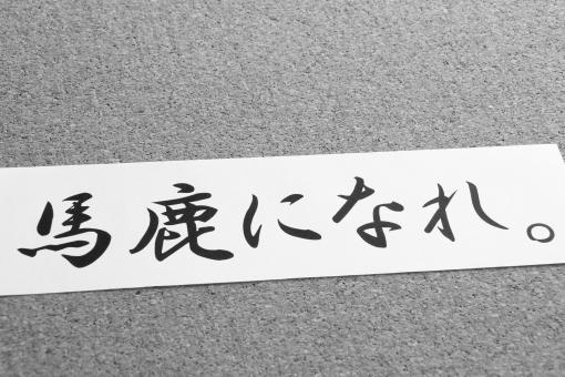 馬鹿になれ バカ 利口 成功 失敗 格言 名言 メッセージ コメント 日本語 言葉 コトバ こだわり 偏見 見方 考え方 捉え方 人生 生き方 人間 挑戦 チャレンジ 本質 思考 性格 認識 天才 努力 勝ち組 負け組