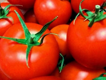 とまと トマト 赤 夏野菜 夏 健康 野菜 果物 新鮮 フレッシュ 食べ物 リコピン ビビット 完熟トマト 水耕栽培