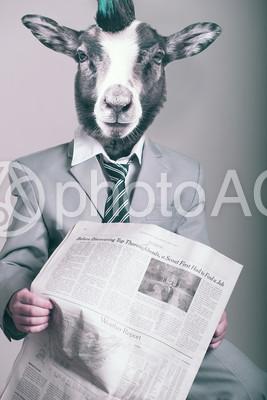 新聞を読むヤギ人間の写真