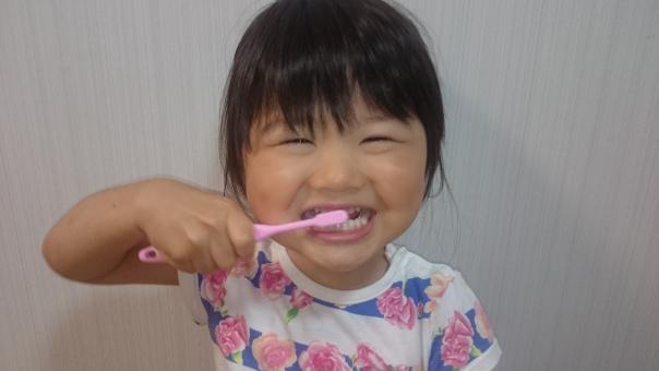 はみがき 歯みがき 幼児 3才 笑顔 子供 女児 child smiling face girl tooth brushing kids japanese 日本人 子ども 元気 陽気 楽しい 明るい 歯磨き 女の子