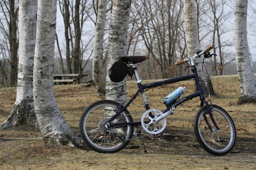 高原 白樺 自転車 ミニベロ サイクリング ポタリング 撮影 カメラ 蒜山高原 真庭市 岡山