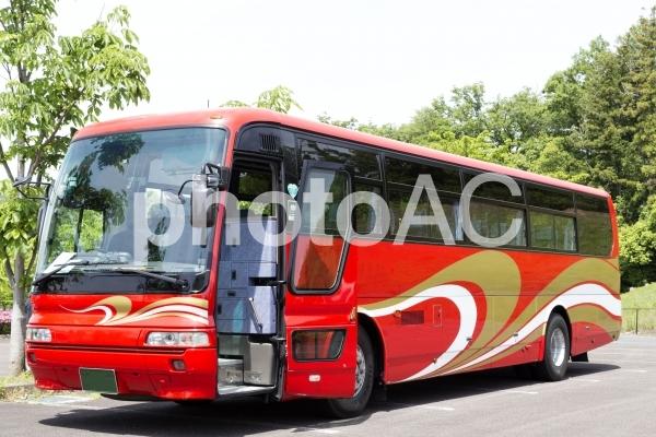 春だ、バスで旅行に行こう!の写真