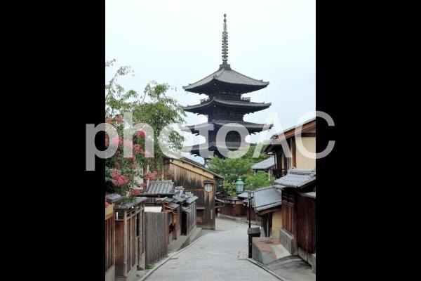 八坂の塔 の写真