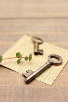 アンティーク キー 鍵 かぎ カギ セキュリティ 防犯 金属 古い レトロ ビンテージ ヴィンテージ 施錠 カード メッセージカード 緑 植物 草 木 ウッド