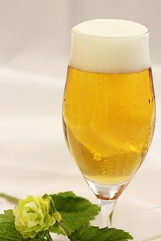 生ビール ビール アルコール お酒 ドリンク 飲み物 泡 ビアガーデン ビアホール 夏 乾杯 ホップ 潤い 呑み 飲み 1杯 一杯 白背景 白バック ホワイトバック 室内 屋内 テーブルクロス 卓布 葉っぱ 植物 葉 花