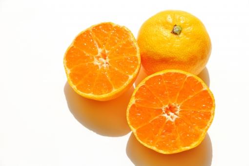 みかん ミカン 蜜柑 果物 果実 フルーツ 柑橘類 実 果肉 果汁 ジュース オレンジジュース みかんジュース 輪切り 半分 房 つぶつぶ 粒々 秋 冬 オレンジ オレンジ色 orange 橙色 自然 植物 壁紙 背景 テクスチャ 素材 酸っぱい 甘酸っぱい 甘い 皮 みかんの皮 丸い ころころ コロコロ ビタミンc ビタミン 香り 芳香 美味しい おいしい 食材 食品 食物 食べ物 搾る 搾汁