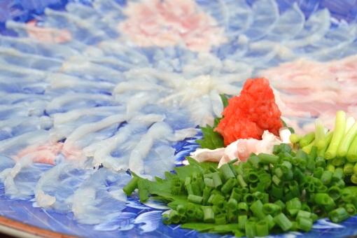 てっさ ふぐ 刺身 魚 料理 海鮮 美味しい 新鮮 海の幸 冬 ふぐちり 新鮮 魚介類 魚貝 魚介 日本料理 和食 会席 懐石 フグ テッポウ てっぽう お刺身 生もの 日本酒 料亭 和食 河豚 お造り ふぐ刺し