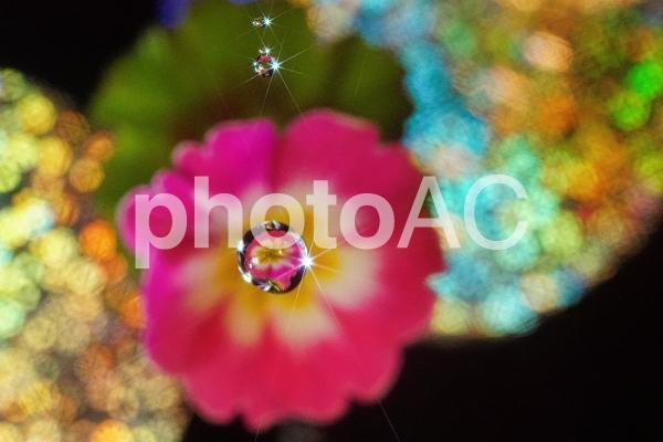 ファンタジー クロスライト Ⅰの写真