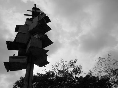 パキスタン 外国 熱帯 南国 南アジア 生き物 空 曇り 天気 芸術 美術 アート オブジェ ディスプレイ 飾る 重ねる カラフル 箱 高い 積む 木 樹木 自然 植物 アップ ローアングル 屋外 室外 風景 景色 景観 無人 モノクロ 白黒