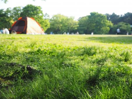 レジャー 休み 休日 公園 キャンプ アウトドア キャンプ場 屋外 芝生 草 自然 グリーン 遊び ホリデー お出かけ 連休 テント キャンプ用品 ホビー 木 草原 草っ原 さわやかな さわやか 気持ち良い 心地よい 楽しい 家族サービス 外出 予定 エンジョイ 晴れ 晴 快晴 晴天 森 森林 広場 緑 みどり 環境 エコ 景色 パーク のんびり 新緑 深緑 アクティブ 生い茂る 背景 背景素材 バックグラウンド イメージ 活動的 活動的な