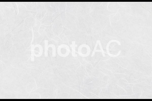 和紙素材-白の写真