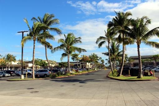 ハワイ オアフ島 アウトレット 駐車場 ヤシの木 椰子 木