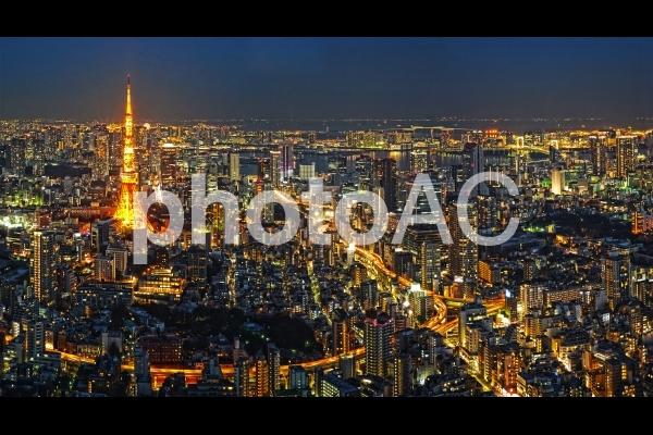 東京都港区の夜景の写真