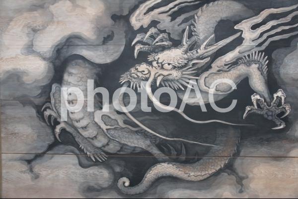 越後の龍の写真