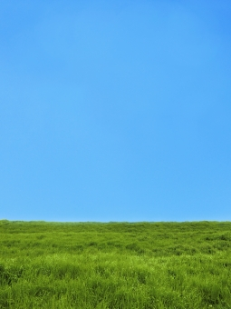 自然 植物 空気 草 空 青空 草原 雲一つ無い 雲ひとつない 雲ひとつ無い 青天 晴天 快晴 青 緑 水色 土手 芝 芝生 丘 シンプル 広大 さわやか 爽やか 爽快 鮮やか すがすがしい 気持ちいい 気持ち良い 晴れ 天気 ナチュラル グリーン 黄緑 新緑 明るい 葉っぱ はっぱ 風景 エコ エコロジー 環境 eco eco いやし リラックス リラクゼーション やすらぎ 安らぎ マイナスイオン 健康 美容 背景 背景素材 テクスチャ テクスチャー バックグラウンド 3月 4月 5月 6月 7月 8月 9月