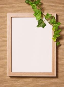 アイビー 写真立て フレーム 植物枠 記念 壁紙 文具 ナチュラル 額 グリーン 額縁 飾る 壁 つたう 写真立て フォト ベージュ 植物 文具 おしゃれ 手紙 はめ込む 雑貨 インテリア