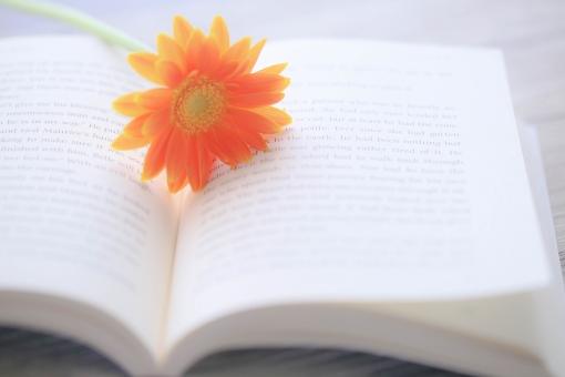 ガーベラと本の写真