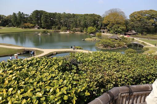 日本 岡山県 岡山後楽園 日本三名園 日本庭園 大名庭園 回遊式庭園 文化 特別名勝 沢の池 芝生 木立 緑 人物 観光客 景色 風景 情景 自然 癒し わび さび 静寂 落ち着き 和風 旅行 観光 名所