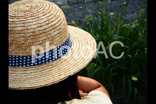 麦わら帽子の少女とネコジャラシの写真