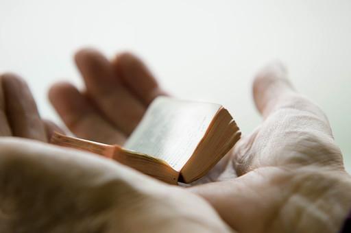 本 ブック 書物 書籍 図書 読書 読む 趣味 勉強 厚い 分厚い ミニ ミニチュア 小さい 小 ページ 開く めくる 捲る 置く 接写 クローズアップ アップ 乗せる 乗る 手 掌 手の平 両手 豆本