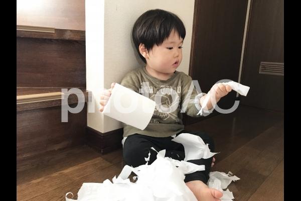トイレットペーパーで遊ぶ子供の写真
