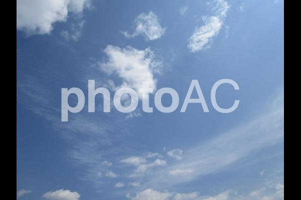 春の青空の写真