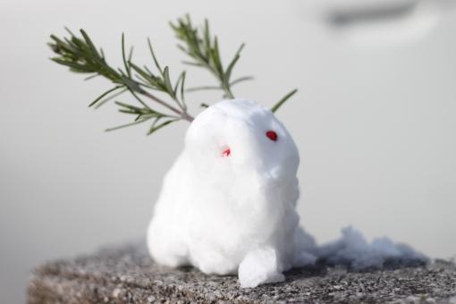 雪ウサギ ユキウサギ 雪兎 子供 雪遊び 冬 かわいい 赤い実 南天