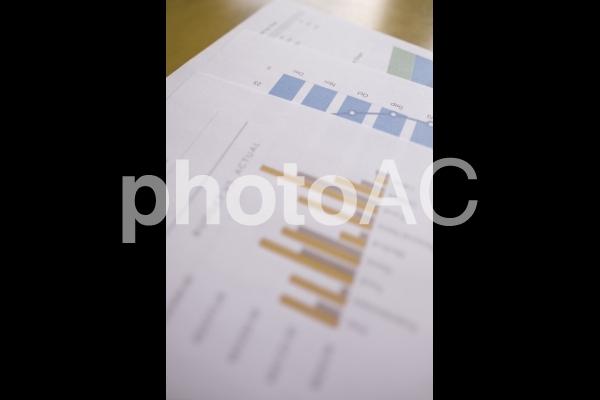 チャートグラフ・棒グラフ12の写真