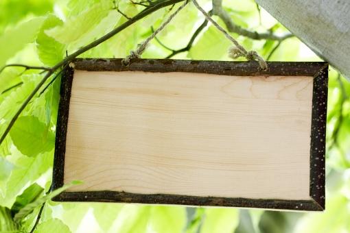 森の中の小さな看板_2の写真