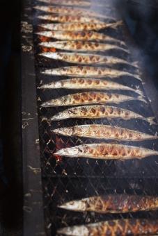 さんま サンマ 秋刀魚 鮮魚 炭火焼 秋刀魚の塩焼き サンマの塩焼き さんまの塩焼き さかな 魚 秋 秋の味覚 大量 大漁 焼き魚