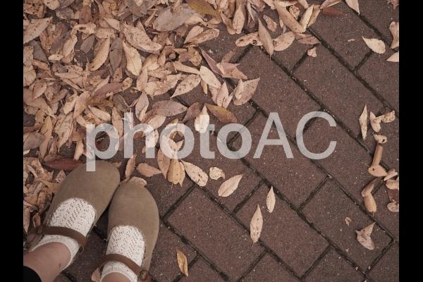 落葉と足元の写真